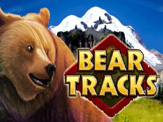 Bear Tracks Slot