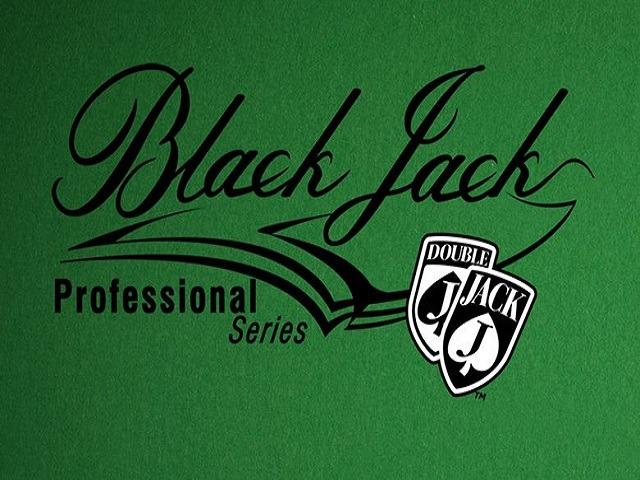 Blackjack Professional Series Slot