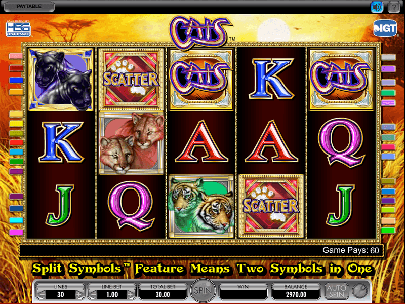 Cats Slot Machine Download