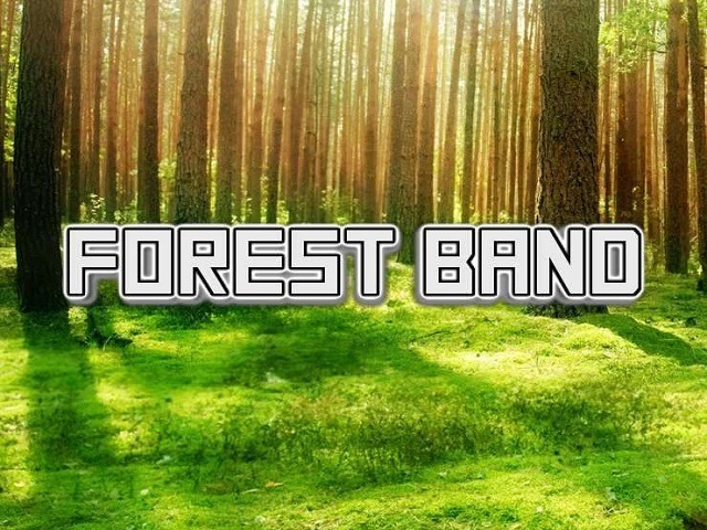 Forest Band Slot