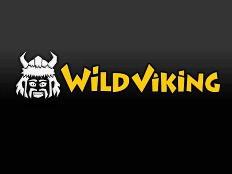 Wild Viking Slot