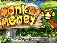 Monkey Money Slot