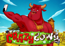 Crazy Cows
